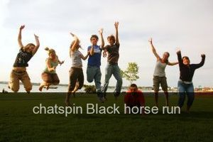 Chatspin Black horse run